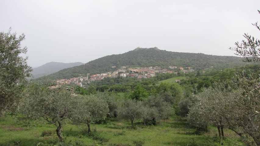 Mountain Holidays in Sardinia - Teti - Flat