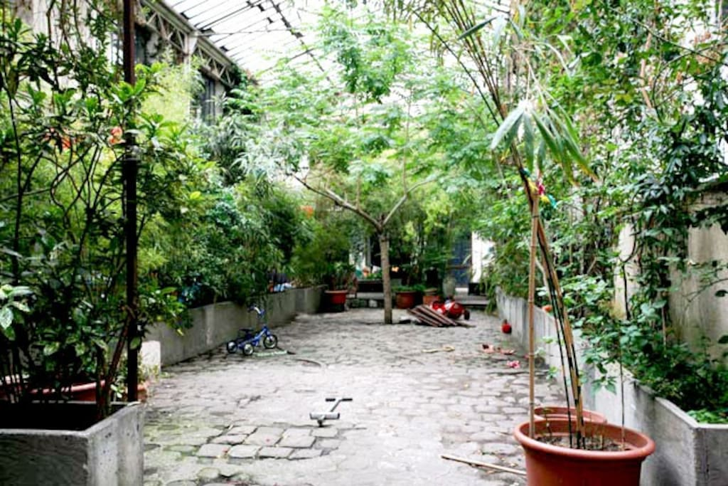 Parisian Courtyard with trees.