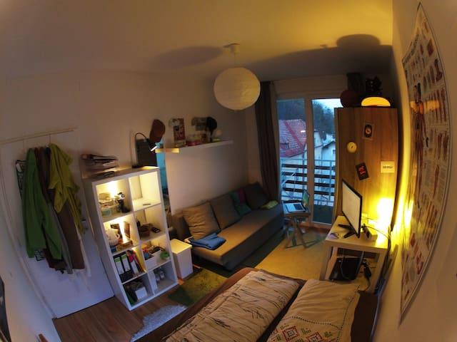 Small Apartment near City centre - Innsbruck - Apartment