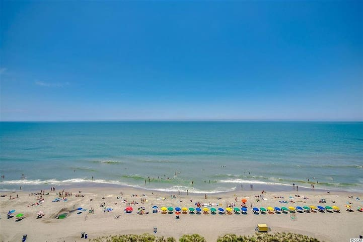 Breathtaking Views from this Oceanfront Condo 1/1