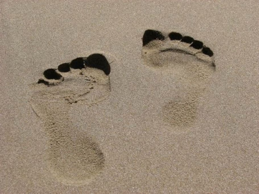 Welcome to Cape Footprints, a house in the design of two feet