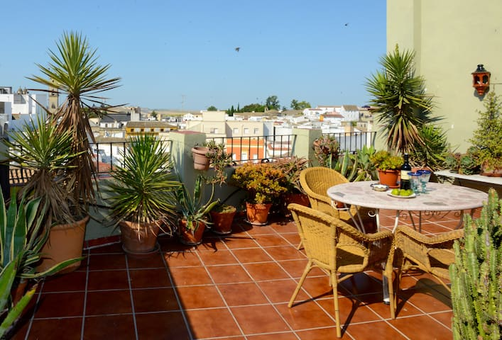 Bright & spacious apartments with views cathedral - Jerez de la Frontera - Apartemen