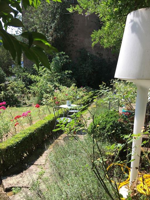 Jardin devant pour un café au soleil