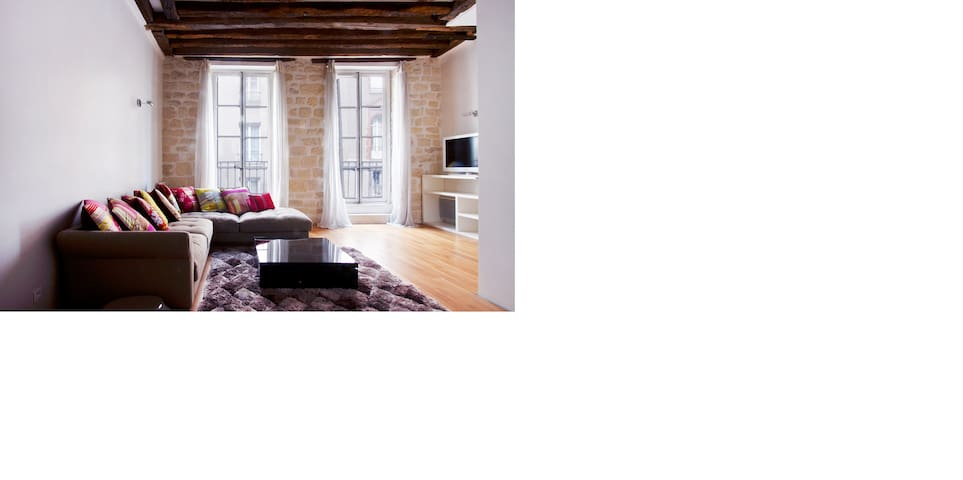 Historic Center of Paris - Paris - Wohnung