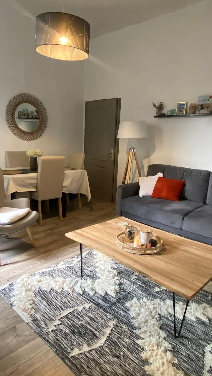Appartement Centre ville Proche Vauban