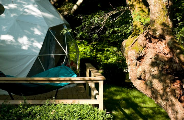 Dome 1 - glamping in the heart of the campsite
