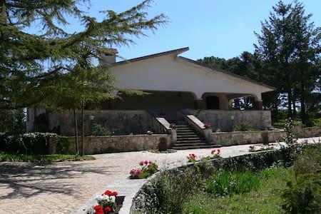 Villa Marzano - アルベロベッロ