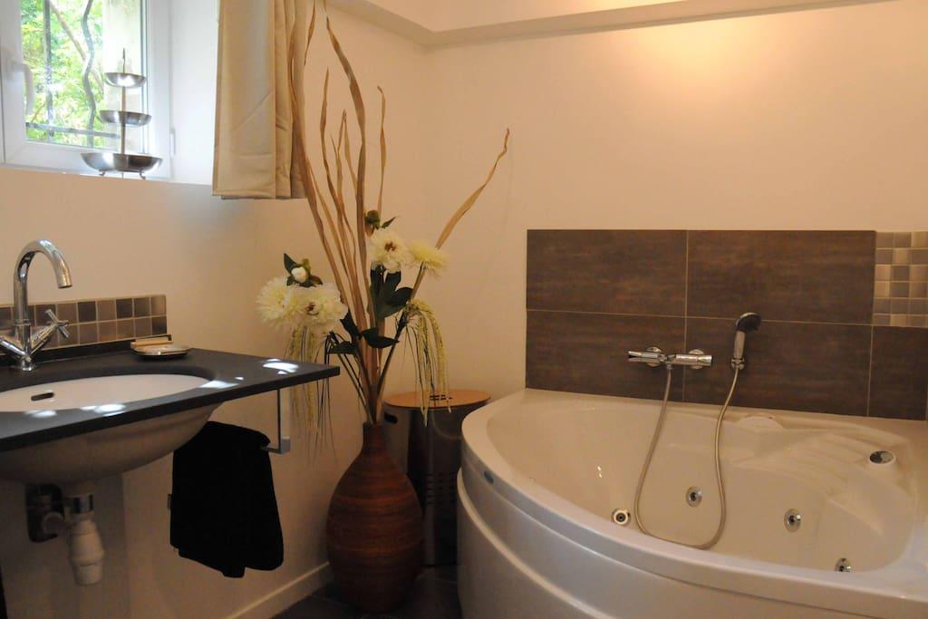 salle de bains avec balnéo