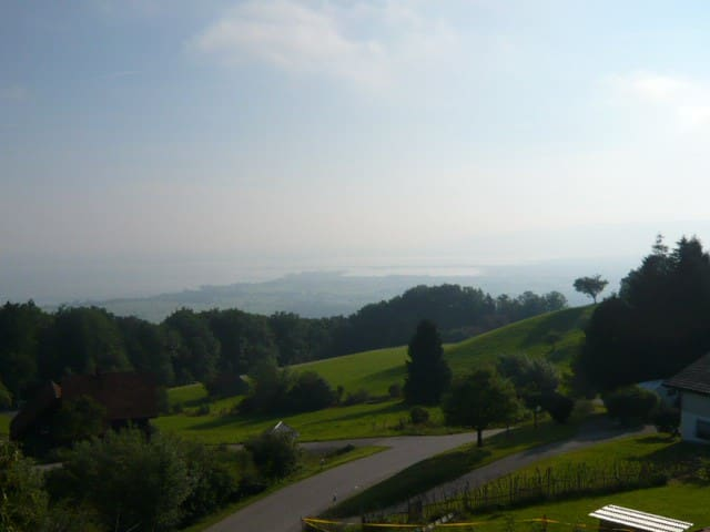 Rooftop room overlooking lake constance