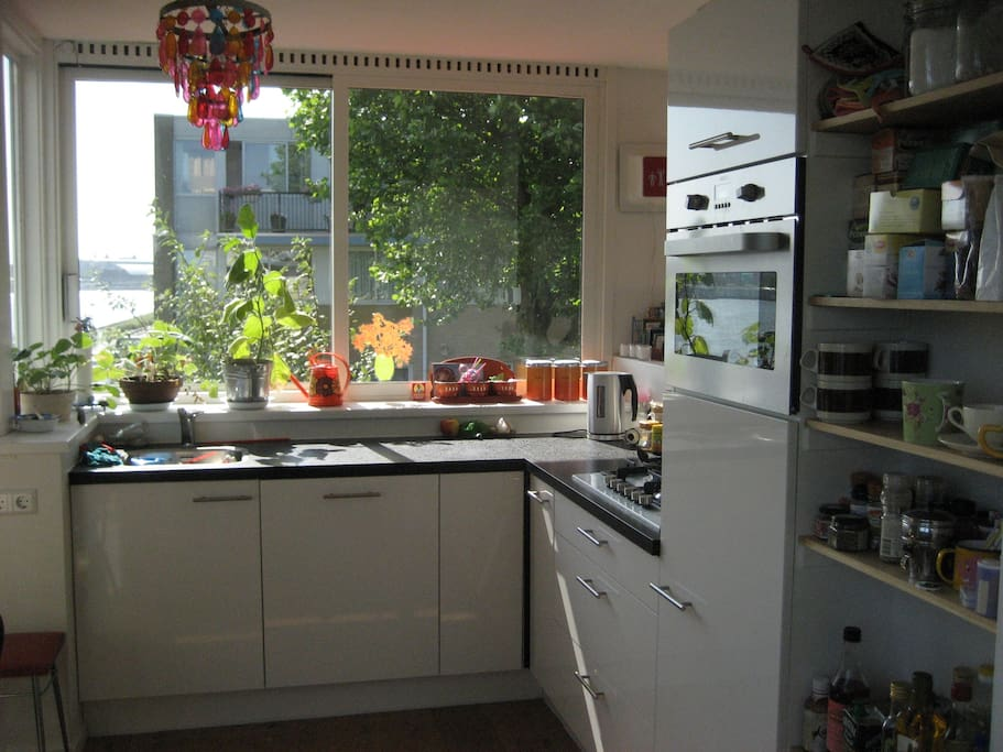 The open kitchen including dishwasher, stove, microwave, fridge and all kinds of lovely tea