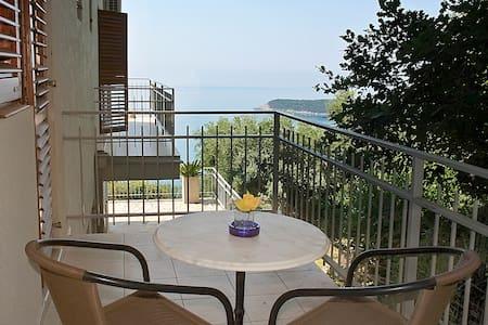 Studio apartment with sea view - Prijevor - 公寓