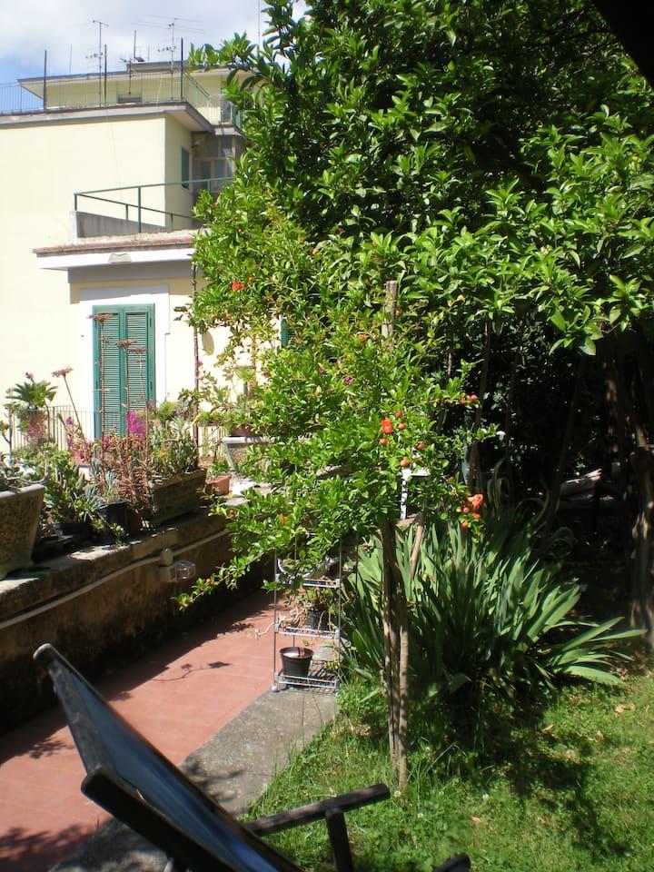 Casa Nocera! - Oasis avec jardins