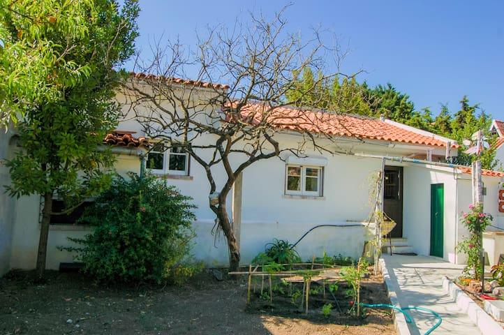 Cosy little house near the beach