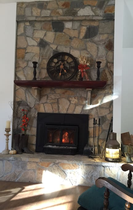 Wood burning fireplace in the living room