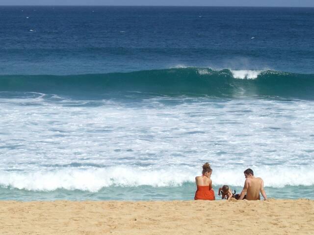 Oceanfront  Beach House Pipeline