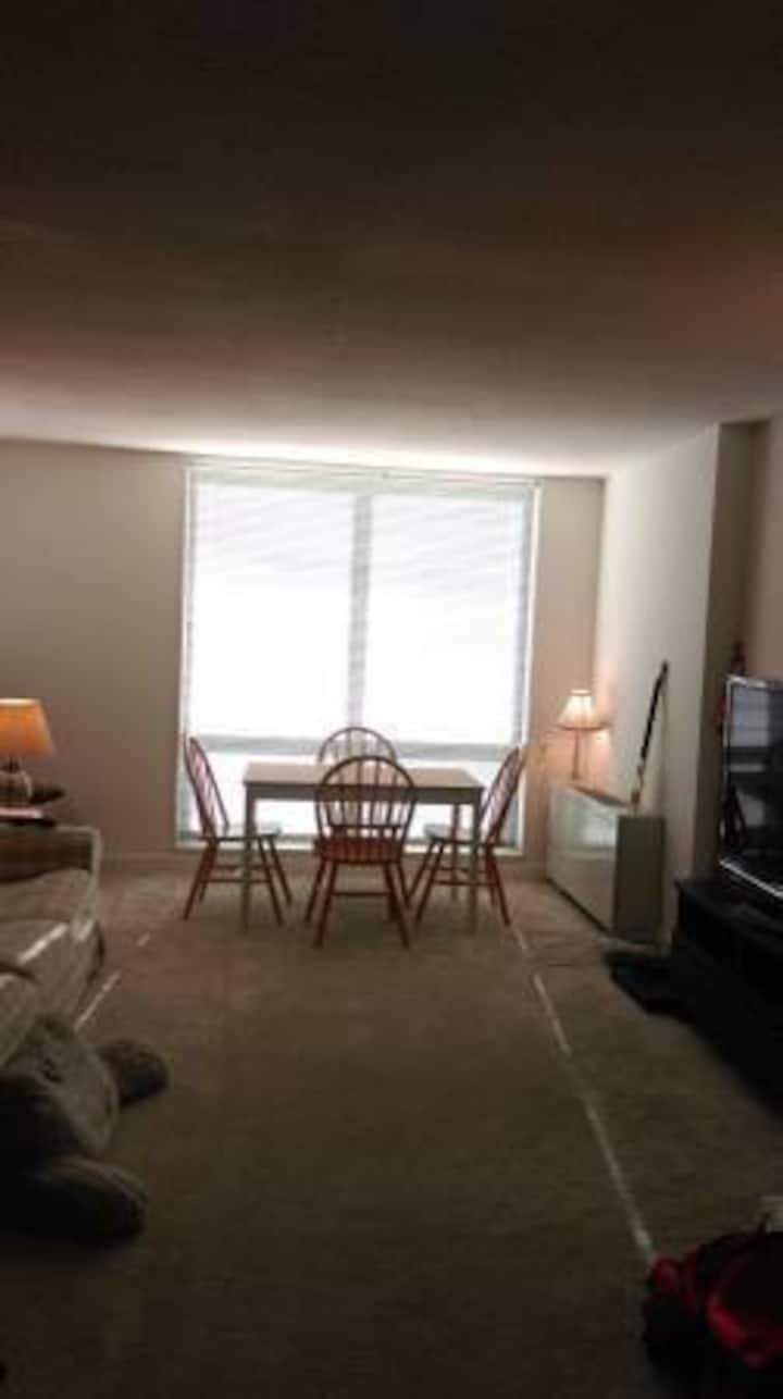 Spacious Living Room at Silver Spring