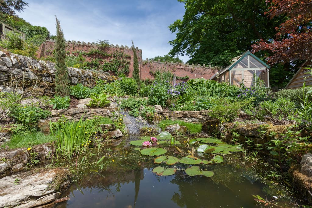 view from the kitchen, pond and garden
