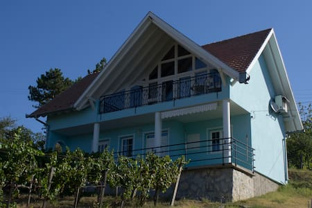 for rent wine house with airco - szederkeny - Dům