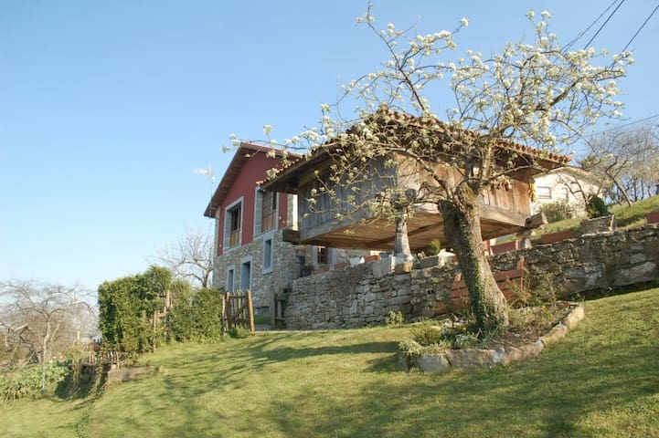 Rural House in Asturias - Astúries - Casa