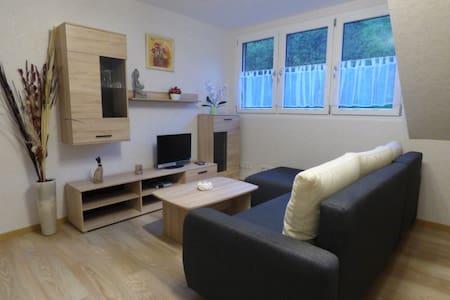 Ruhige Traumlage in Moselnähe neues modernes Appartement