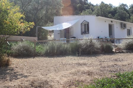 Casita tucked away in the olive groves