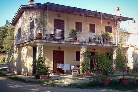appartamento in agriturismo - Torrita Tiberina - Lägenhet