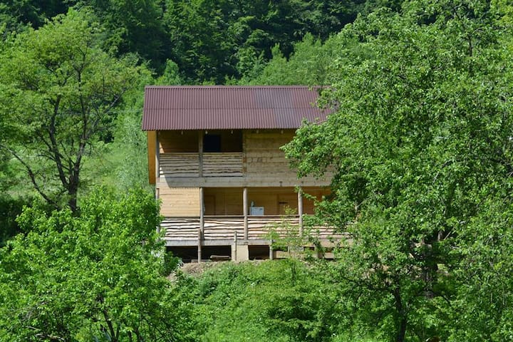 Carpathians.Rest in the eco-estate