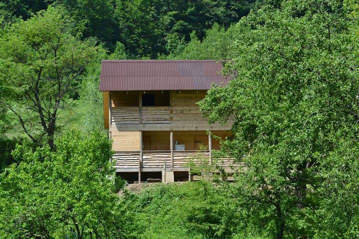 Carpathians.Rest in the eco-estate