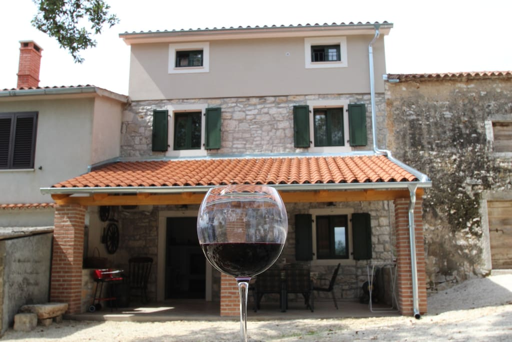 House with terrace in a vine region
