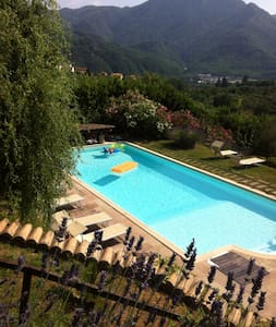A LOFT IMMERSED IN NATURE WITH POOL - Borgo a Mozzano