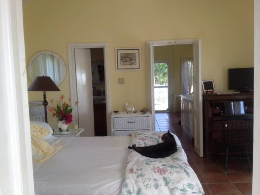 Lemony Bedroom.