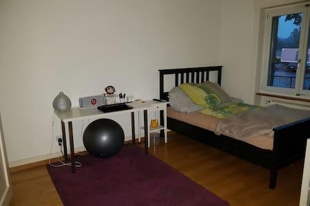 Münsingen Sublets, Short Term Rentals & Rooms for Rent - Airbnb ...