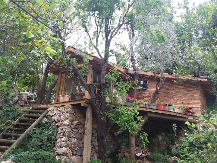 Wooden Hut for Rock Climbers
