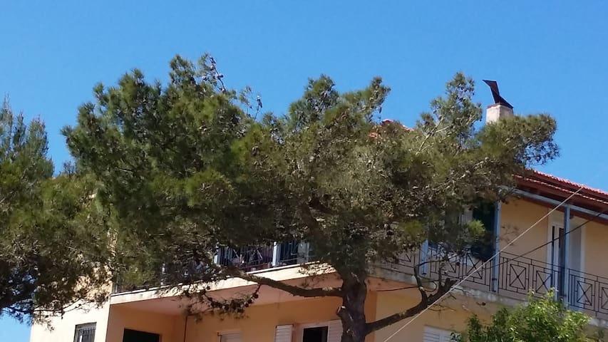 Rifi Pine House - Rifi - Talo