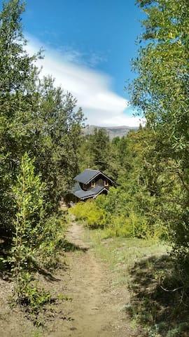 Hermosa cabaña situada en bosque nativo.