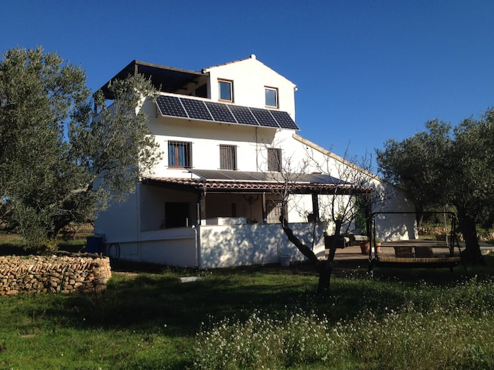 "Eco home ""El Gínjol""- Roomy house in an olive farm"