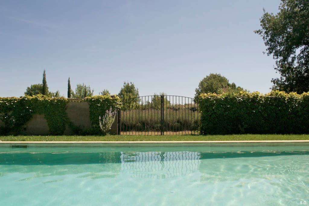 Large swimming pool in Provencal garden
