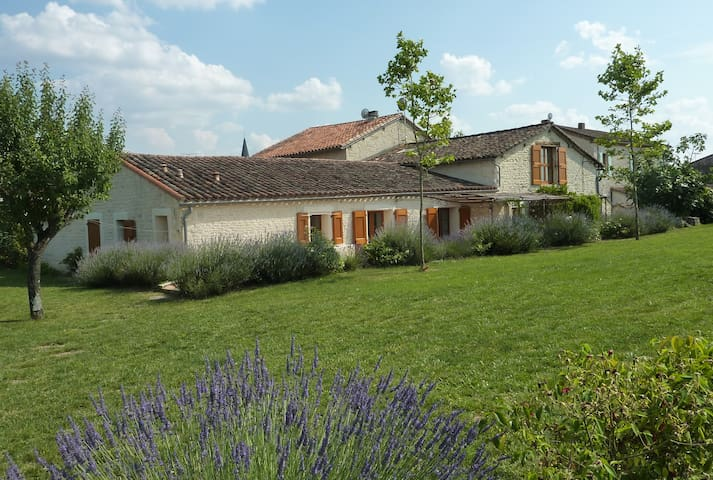 Gite near Cordes and Albi with pool - Noailles - House