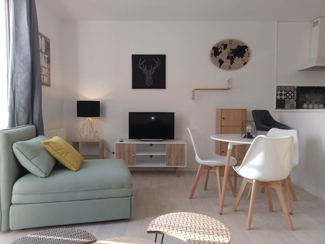 Appartement de standing scandinave tout confort !