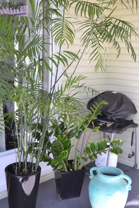 Pandanus House porch with BBQ.