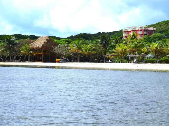 Close up view of Beach Palapa Bar and Condo Building