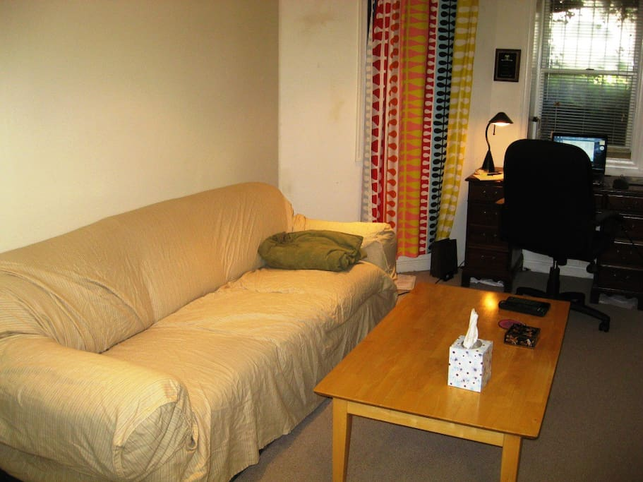 Living room - and pull out couch
