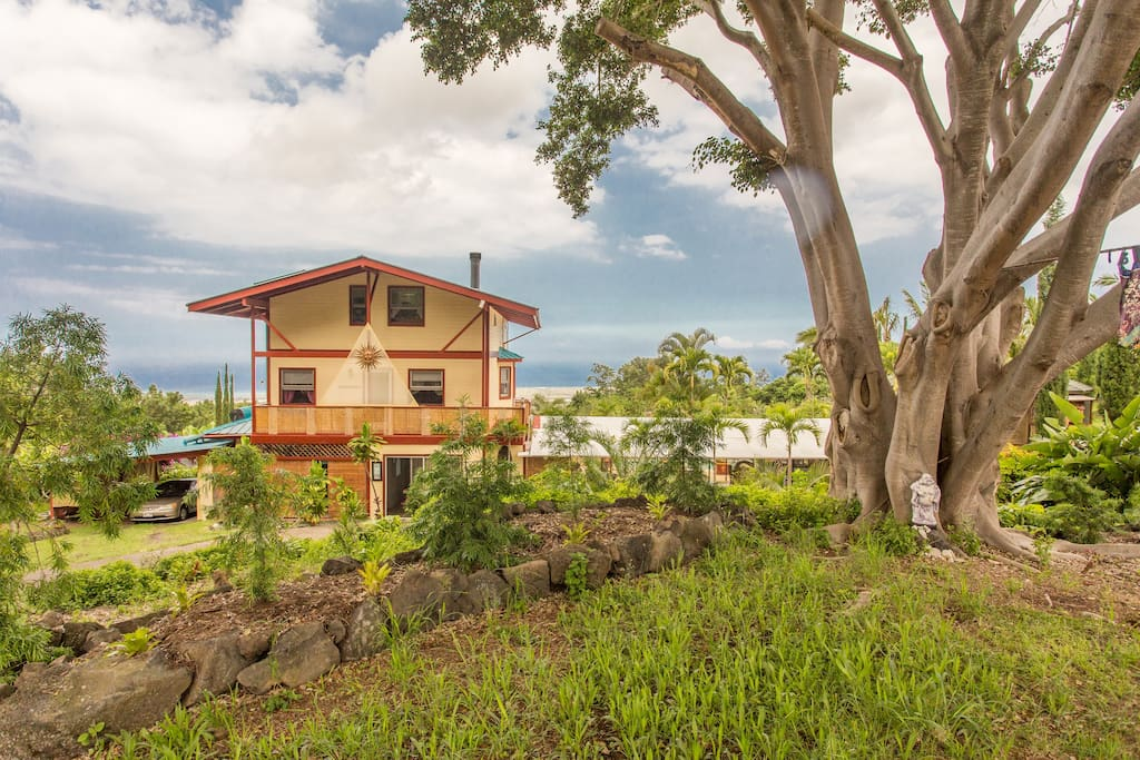 A great view from the top of the property, just above the banyan tree, looking at the front entryway of the main house with the ocean beyond.