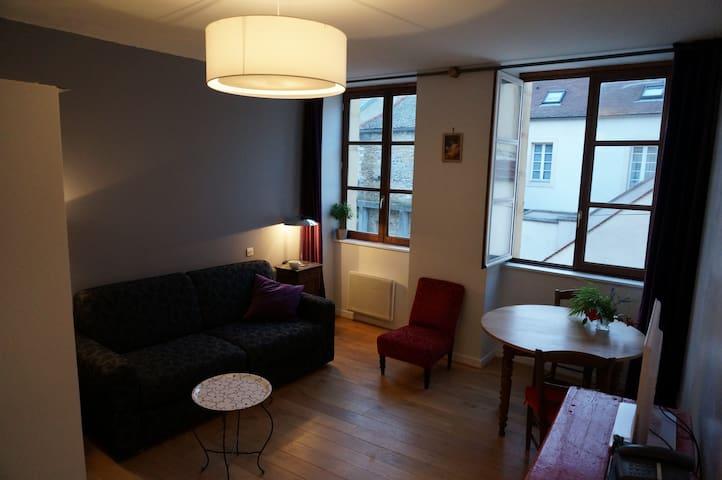 Nice studio,historic center, quiet - Dijon - Lakás