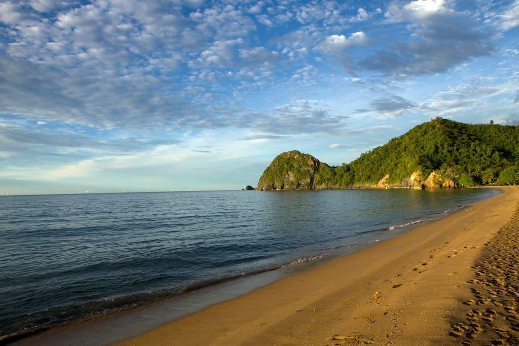 Playa Querepare de Abril - Agosto , desobe de Tortugas marinas