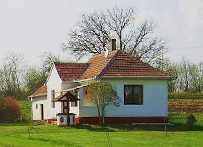 Ferienhaus Themis in Westungarn - Baktüttös - Haus