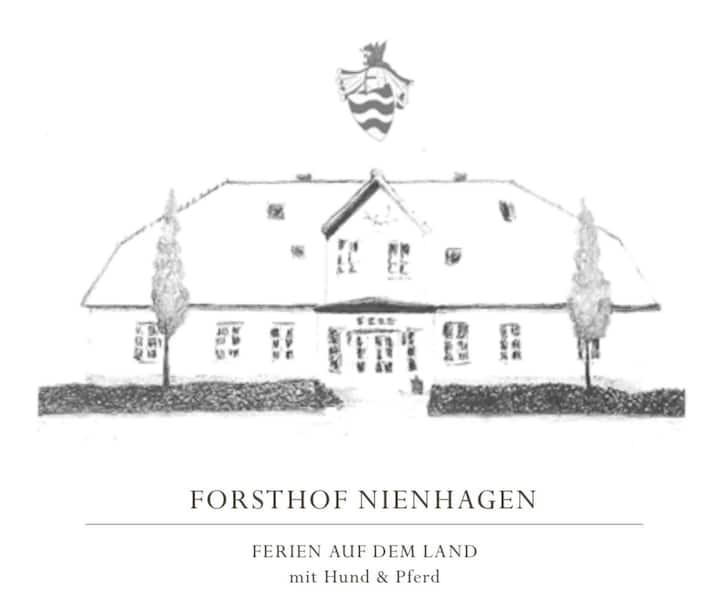 Heuschober des Forsthofes Nienhagen