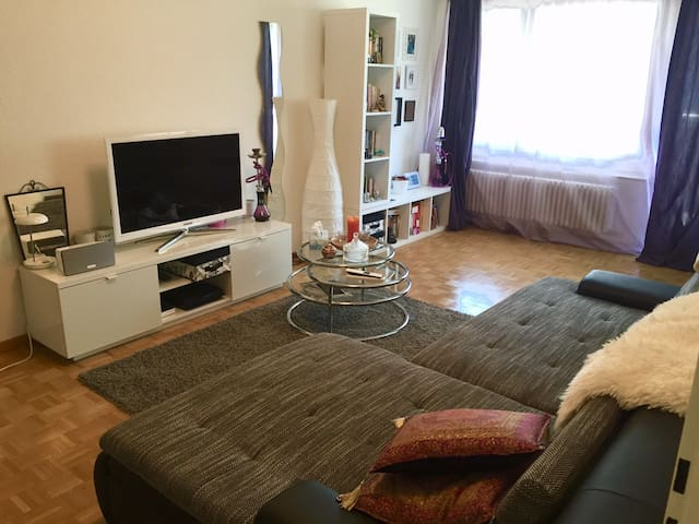 Beautiful spacious apartment in Zurich - Zürih