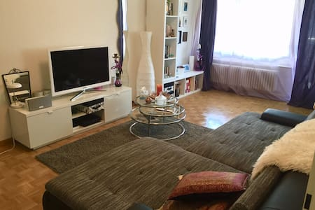 Beautiful spacious apartment in Zurich - Zürich - Lejlighed