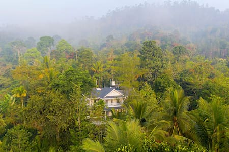 A plantation homestay nestled in the lap of nature